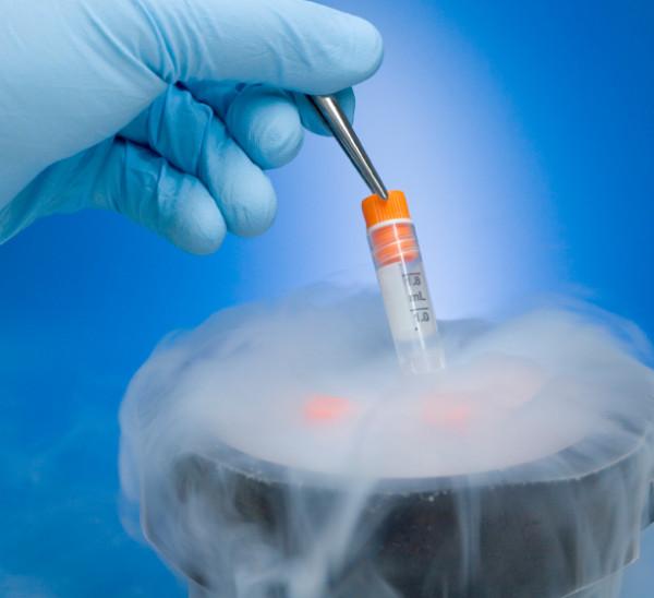 Se cuestiona la idoneidad técnica y ética de las clínicas norteamericanas de terapia celular