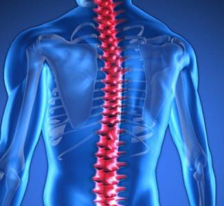 Se trata la lesión de médula espinal con células madre embrionarias con aparente éxito