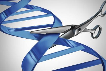 La edición genética hoy. Su valoración bioética