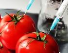 Papel de la ingeniería genética en la agricultura europea