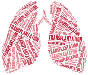 Las donaciones de órganos son insuficientes. Apoyarlas es una necesidad social ineludible