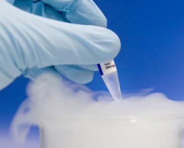 Donación de embriones humanos congelados, datos de EEUU