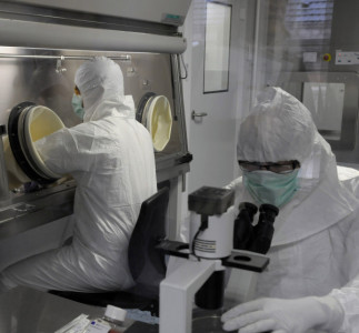 Se legaliza en Europa la primera terapia génica celular  para tratar una enfermedad hematológica