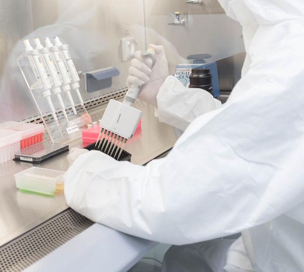 Uso clínico de células madre que se utilizan en enfermedades hematológicas, en fracturas óseas, enfermedades retinianas o en trastornos de médula espinal.