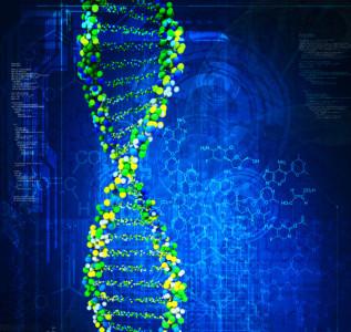 ¿Se puede regular la edición genética?