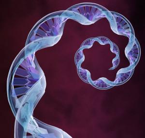 Tras la aprobación de la transferencia mitocondrial para impedir el desarrollo de enfermedades mitocondriales a hijos, se abre el debate ético.