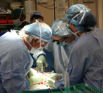 Trasplante de útero a partir de una donante fallecida. Se da el primer caso
