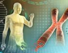 Las Academias de EEUU se muestran favorables a la edición genética de la línea germinal