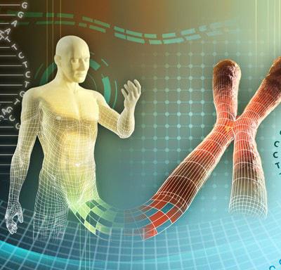 Edición genética de la línea germinal. Los riesgos son impredecibles y los cambios producidos se podrían transmitir a la descendencia.
