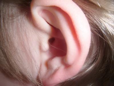 Se generan organoides de oído interno a partir de células madre humanas