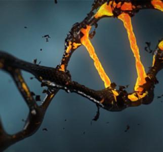 """""""Huecos"""" en la secuenciación del genoma humano"""