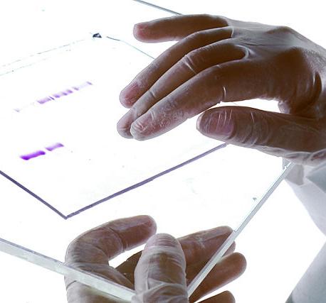 Responsabilidad ética de los facultativos que participan en el diagnóstico genético preimplantacional