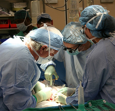 Donaciones de órganos para trasplantes. Fallecen cerca de 4.000 europeos esperando un trasplante y 59.168 enfermos están en lista de espera