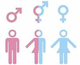 Tercer género. Alemania puede ser el primer país en legalizar la existencia de un tercer género diferente del masculino y el femenino.
