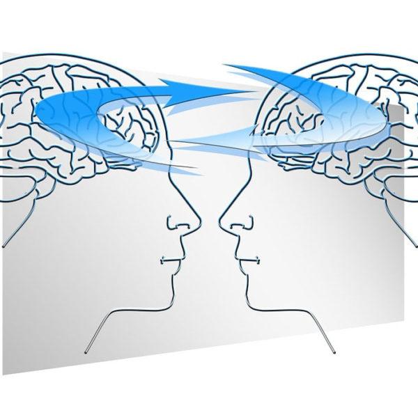Cerebro masculino y femenino: ¿iguales o diferentes? Diversos trabajos muestran que existen diferencias sexuales regionales en ambos cerebros.