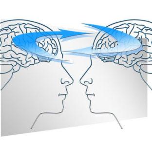 Cerebro masculino y femenino: ¿iguales o diferentes?