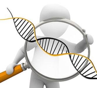 ¿Qué es el genetismo?