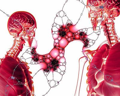 El cuerpo humano. Cada vez sabemos mas de su gran potencial biológico. En efecto, los 37 trillones de células de nuestro cuerpo se dividen entre 50 y 70 veces.