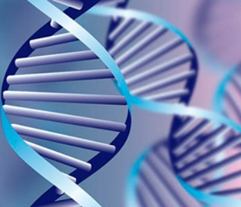 El lento progreso de la terapia génica