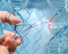 Nuevas dudas sobre la terapia génica
