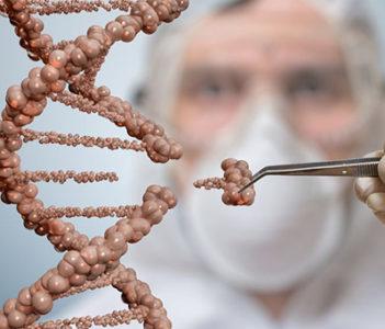Nace una asociación para la regulación internacional de la edición genética