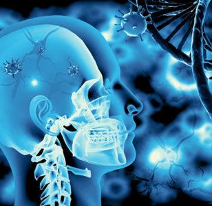 ¿La clonación de seres humanos está cerca?