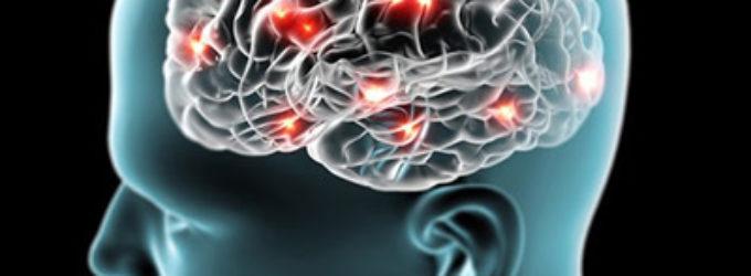 ¿Ha llegado a su límite la conectividad entre las neuronas?