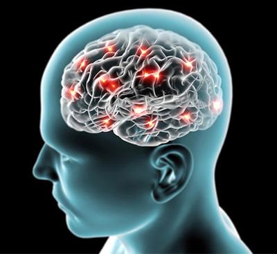 Parece que la conectividad entre las neuronas ha llegado a su límite