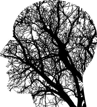 Las investigaciones en neurociencia, con el objetivo último de profundizar en el conocimiento del el cerebro humano, del que tan poco sabemos todavía, están avanzando vertiginosamente.
