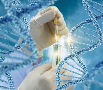 CRISPR-Cas9 produce más daños en el genoma de lo que se pensaba
