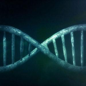 Parece que los genes codificantes son menos de los que se pensaba