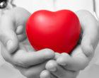 España lidera el ranking de trasplantes de órganos en el mundo