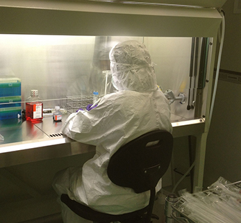La reprogramación celular revoluciona el mundo biomédico