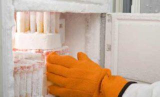 Se refuerza la seguridad de los congeladores que contienen ovocitos y embriones humanos