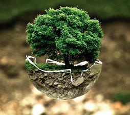 Se propone la cooperación entre Ciencia y Fe para el cuidado del planeta