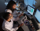 """""""Conflictos de intereses"""" en los trabajos de investigación científica"""