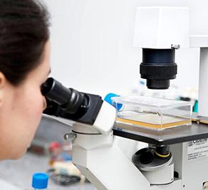La secuenciación unicelular abre prometedoras posibilidades en investigaciones biomédicas