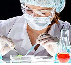 ¿Cuál es el papel de hombres y mujeres en la investigación científica?