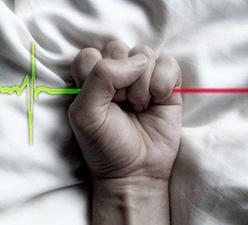 Aumentan los casos de eutanasia en Quebec
