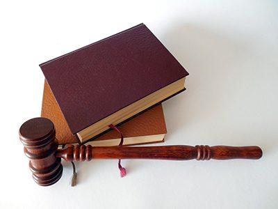 Se elabora un gran trabajo de recopilación sobre legislación bioética