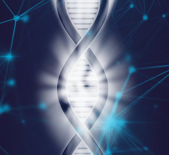 Objeciones éticas a la introducción de modificaciones en el genoma humano germinal