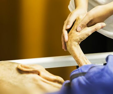 Se amplía el concepto de Cuidados Paliativos