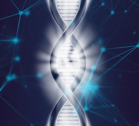 Se abren nuevas posibilidades en el estudio del genoma fetal