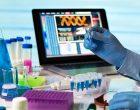 La OMS recomienda llevar un registro de todos los experimentos de edición genética realizados en humanos