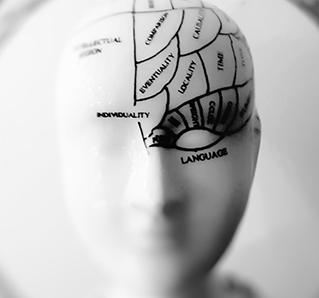 Parece posible restablecer gran parte de la funcionalidad del cerebro horas después del fallecimiento