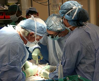El trasplante de pene plantea un controvertido dilema bioético