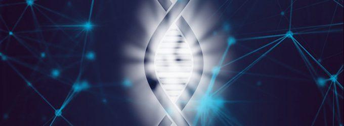 Se autoriza el primer experimento de modificación del genoma de embriones humanos en España