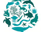 Conservar la biodiversidad es un asunto de primera importancia