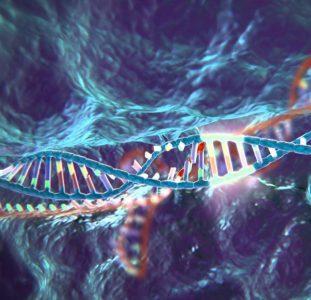 Una investigación combina los avances en edición genética con el potencial terapéutico de las células madre