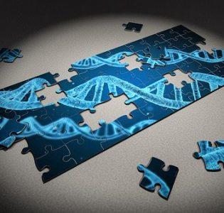 Un estudio confirma que la edición genética de embriones todavía no es segura